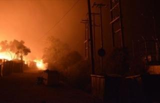 Yunanistan'ın Midilli Adası'ndaki yangın...