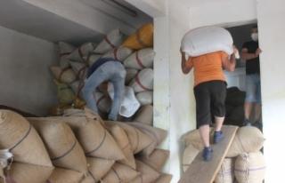 Eylül ayı içerisinde 33 bin 471 ton fındık ihraç...