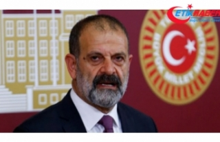 Bağımsız Mardin Milletvekili Çelik'in yasama...