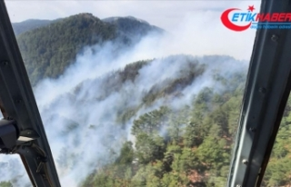 Mersin'de orman yangını nedeniyle 50 ev tahliye...