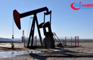 TP'ye 4 petrol arama ruhsatı verildi
