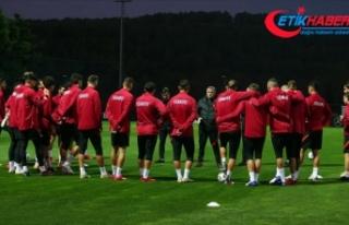 Türkiye, FIFA dünya sıralamasında 33'üncülüğe...