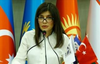 Uluslararası Türk Kültür ve Miras Vakfından Ermenistan'ın...