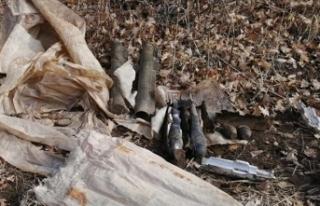 Bitlis'te teröristlere ait iki lav silahı ile...