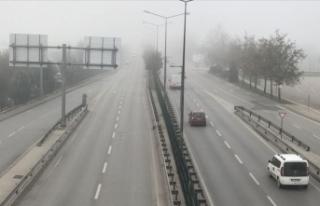 Doğu Marmara ve Batı Karadeniz'de sis etkili...