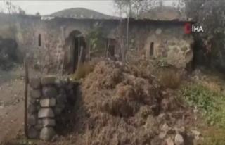 İşgalci Ermenistan Gubadlı'da tarihi camiyi domuz...