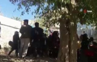 Kabil Üniversitesinde fakülte binasına saldırı:...