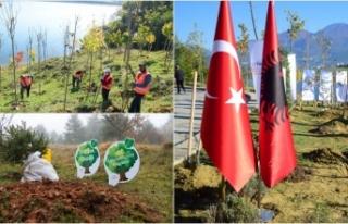 KKTC, Azerbaycan, Bosna Hersek ve Arnavutluk'ta...