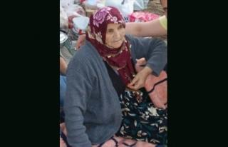 Mantar toplamaya giden yaşlı kadın dağda kayboldu