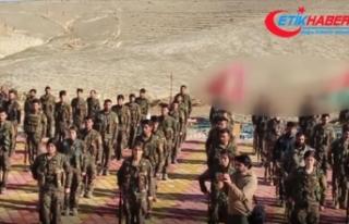 Terör örgütü PKK, Sincar'daki gelir kaynaklarına...