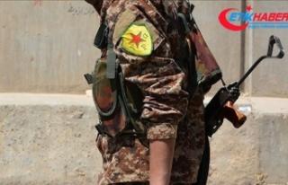 Terör örgütü YPG/PKK, DEAŞ'lıların bulunduğu...