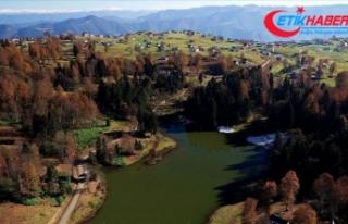 Trabzon Valiliği yaylalarda erzak bırakılmaması...
