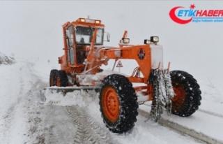 Tunceli'de kar ve tipi nedeniyle 25 köy yolu...