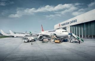Turkish Cargo Avrupa'nın en iyi hava kargo markası...