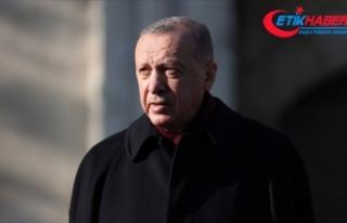 Cumhurbaşkanı Erdoğan: AB üyesi ülkelerin Türkiye'ye...