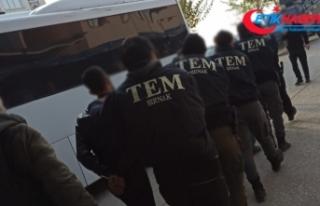 Şırnak'ta terör örgütü PKK'ya yönelik...