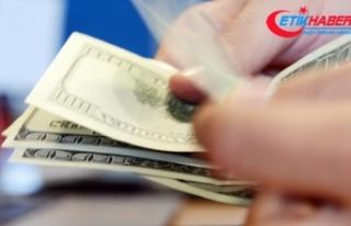 Yılsonu dolar kuru beklentisi düştü