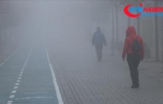 Bolu'da sis nedeniyle görüş mesafesi 30 metreye...