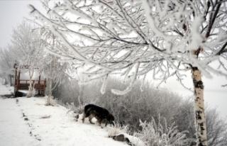 Doğu Anadolu'da gece en düşük sıcaklık...
