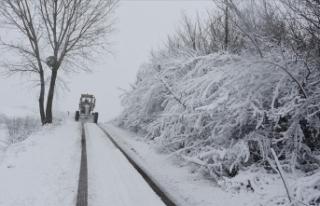 Samsun'da kar yağışı nedeniyle yüz yüze...