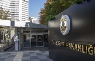 Türkiye Nijer'deki terör saldırısını kınadı