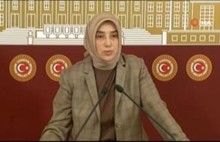 """AK Parti Grup Başkanvekili Özlem Zengin: """"Herkesin..."""