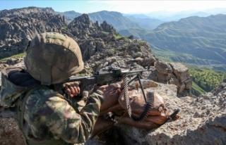 Barış Pınarı bölgesine saldırı girişiminde...