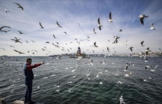 Marmara Bölgesi'nde hava sıcaklığının mevsim...