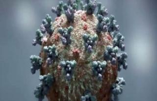 Azerbaycan'da günlük korona virüs vaka sayısı...