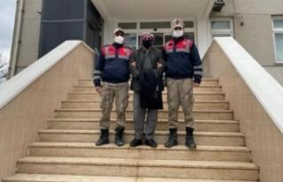 Şanlıurfa'da 13 yıldır aranan cinayet zanlıları...