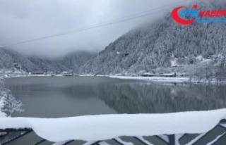 Uzungöl'e Mart karı düştü
