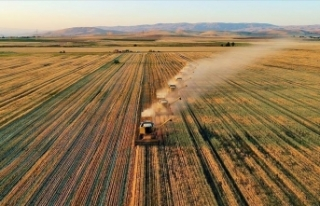 Tarım ve Orman Bakanlığı sağladığı desteklerle...