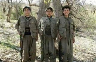 Terör örgütü PKK 9 yaşında dağa kaçırdığı...