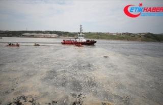Marmara Denizi'nde müsilaj temizleme seferberliği...