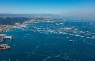 Marmara'dan iki günde 392 metreküp müsilaj...