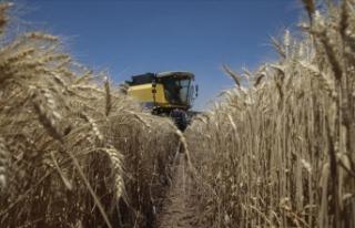 Türkiye'nin en büyük tarım işletmesinde...