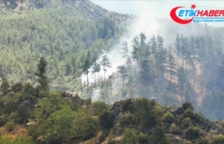 Antalya'da ormanlık alanlara girişler 31 Ağustos'a...