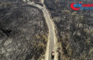 Cumhurbaşkanı Erdoğan: Orman yangınlarından etkilenen...