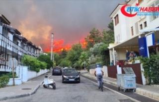Marmaris ve Milas'ta ormanlık alanda yangın...