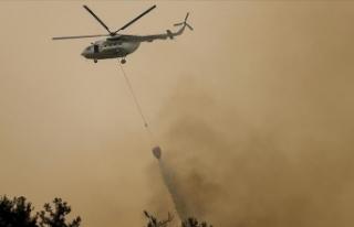 Manavgat'taki orman yangınlarına havadan ve...