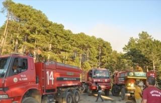 Marmaris ile Köyceğiz'deki orman yangınlarına...