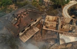 Yangınların yaşandığı bölgelerde hasar tespit...