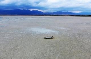 Göçmen kuşların uğrak noktası Karataş Gölü...