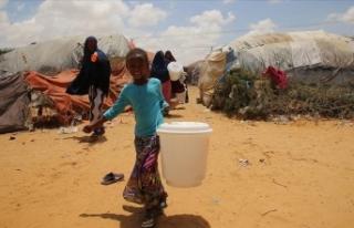 Ruanda kuraklık tehdidine karşı 43 milyon fidan...