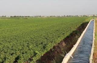 Tarımda gelecek yıl sulama ve altyapı yatırımlarına...