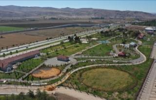 Sivas'ın 100 milyon liralık vizyon projesi...
