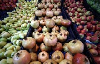 Yaş meyve ve sebze ihracatında 2 milyar dolar barajı...