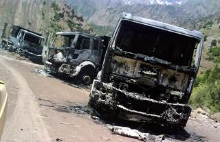 PKK'lılar yol kesip araç yaktı, 2 kişiyi kaçırdı