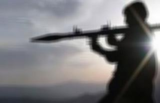 Erzurum'da çatışma: 2 PKK'lı öldürüldü