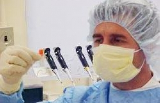Kapatılan tüp bebek merkezindeki embriyolar nakledildi